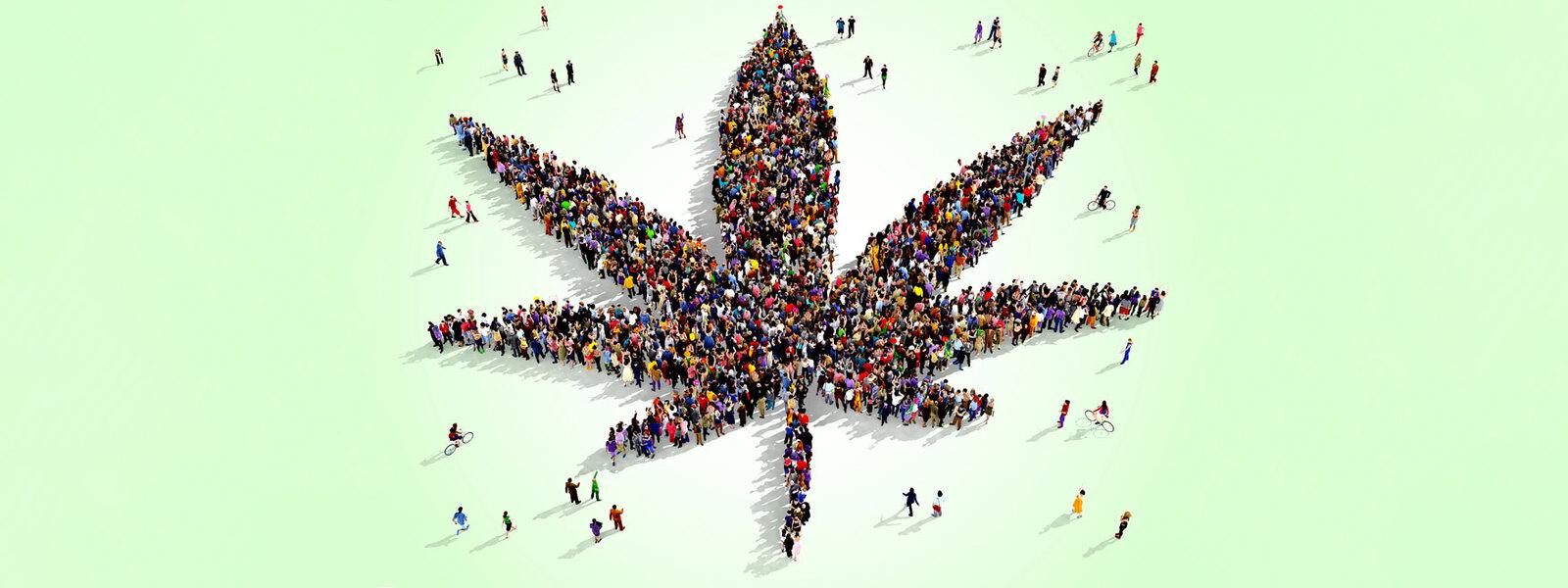 cannabis-community